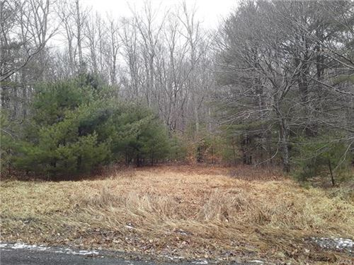 Photo of N/S French Clearing Road, Forestburgh, NY 12777 (MLS # 6003314)