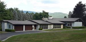 Photo of 10 Diane Drive, Ellenville, NY 12428 (MLS # 4817323)
