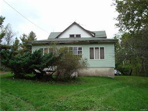 Photo of 1355 Horseshoe Lake Road, Swan Lake, NY 12783 (MLS # 4846323)