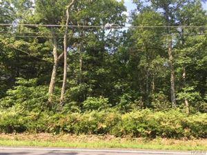 Photo of 3.6-1-84 Forestburgh Road, Glen Spey, NY 12737 (MLS # 4836328)