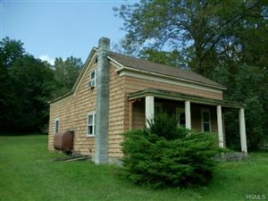 Photo of 169 County Route 121, Callicoon, NY 12723 (MLS # 4844329)