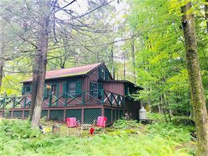 Photo of 17 East Adirondack Trail Tr 103b, Smallwood, NY 12778 (MLS # 5040329)