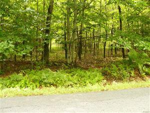 Photo of Hurd & Parks Road Tr 47, Bethel, NY 12720 (MLS # 4922330)