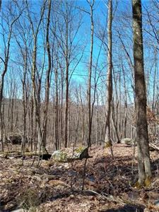 Photo of New Turnpike A, Cochecton, NY 12726 (MLS # 4921344)