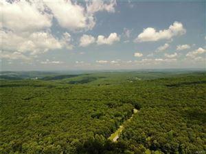 Photo of 37 Trillium Trail, Cochecton, NY 12726 (MLS # 4825345)
