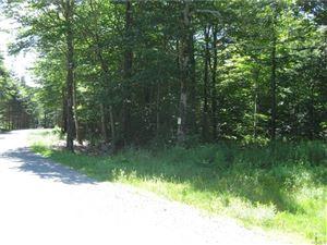 Photo of Meyer Road, Livingston Manor, NY 12758 (MLS # 4838346)