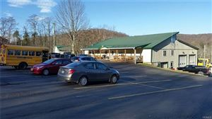 Photo of 2623 State Route 52, Liberty, NY 12754 (MLS # 4901346)