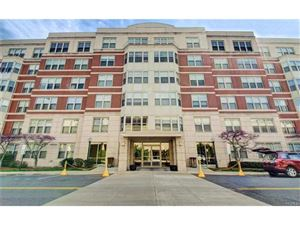 Photo of 300 Mamaroneck Avenue #312, White Plains, NY 10605 (MLS # 4736349)