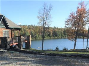 Photo of 268 Haring Road, Barryville, NY 12719 (MLS # 5104360)