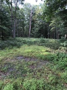 Photo of Lot C5 Black Forest Road, Glen Spey, NY 12737 (MLS # 5031368)