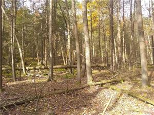 Photo of Dill Road, Forestburgh, NY 12777 (MLS # 5050376)