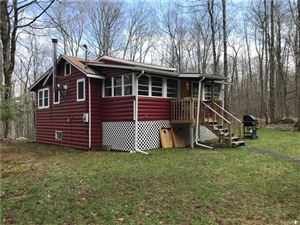 Photo of 429 High View Drive, Smallwood, NY 12778 (MLS # 4820377)