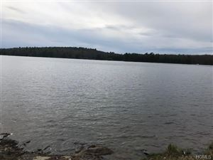 Photo of (lot #34.4) Woods Road, Barryville, NY 12719 (MLS # 4923387)