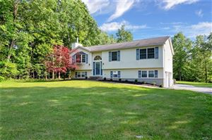 Photo of 261 Mt Orange Road, Middletown, NY 10940 (MLS # 4827390)