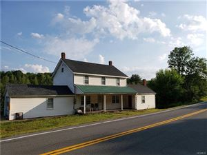 Photo of 6619 State Route 42, Woodbourne, NY 12788 (MLS # 5030398)