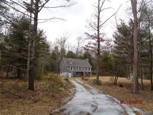 Photo of 11 Woodland Drive, Barryville, NY 12719 (MLS # 4902404)