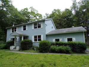Photo of 19 School House Lane, Wallkill, NY 12589 (MLS # 4753407)
