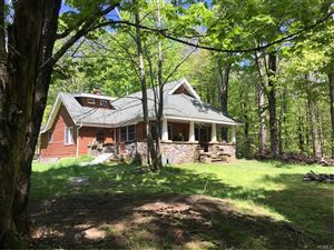 Photo of 76 Plank Road, Mongaup Valley, NY 12762 (MLS # 4934421)