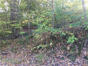 Photo of 18 Cross Creek Run, Highland, NY 12528 (MLS # 4848423)
