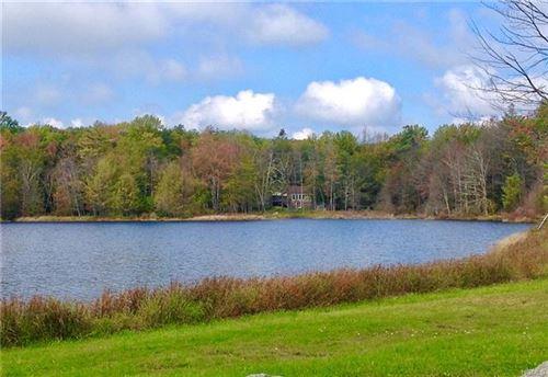 Photo of Pine Lake Drive, Wurtsboro, NY 12790 (MLS # 6000429)