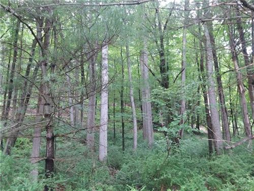 Tiny photo for SBL29-1-34 State Route 97, Pond Eddy, NY 12770 (MLS # 6005449)
