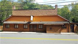 Photo of 99 Ferndale Road, Ferndale, NY 12734 (MLS # 4914450)