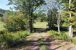 Photo of 1583 Old Route 17, Roscoe, NY 12776 (MLS # 5072451)