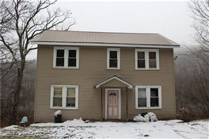 Photo of 394 Benton Hollow Road, Livingston Manor, NY 12758 (MLS # 4914462)