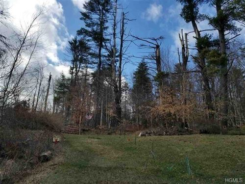 Photo of 1192 County Road 115, Cochecton, NY 12726 (MLS # 6005467)