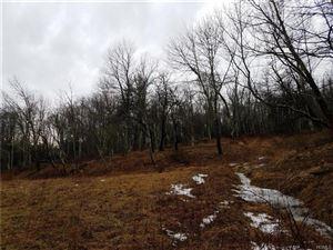 Photo of Old Glen Wild Road Tr 103, Fallsburg, NY 12733 (MLS # 4906469)