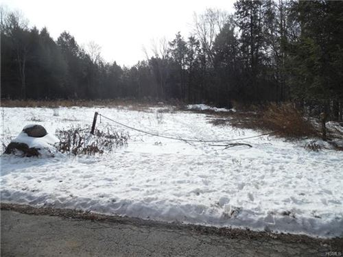Photo of Queen Mountain Road, Liberty, NY 12734 (MLS # 6017482)