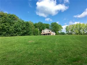 Photo of 393 Dowe Road, Ellenville, NY 12428 (MLS # 4915485)