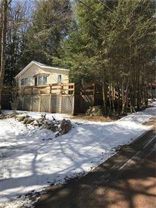 Photo of 32 East Corwin Avenue Tr 103, Smallwood, NY 12778 (MLS # 4916496)