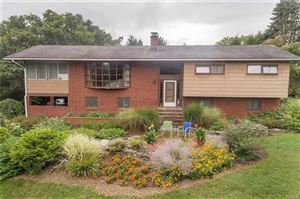 Photo of 378 Vineyard Avenue, Highland, NY 12528 (MLS # 4955513)