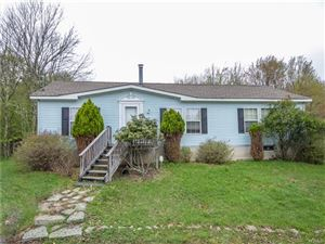 Photo of 303 Weiner Road, Ellenville, NY 12428 (MLS # 4932520)