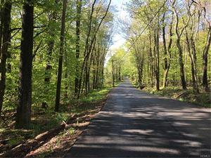 Photo of Creamery Road Tr 20, Mongaup Valley, NY 12762 (MLS # 4938536)