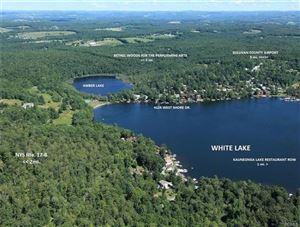 Photo of 4124 West Shore Drive, Kauneonga Lake, NY 12749 (MLS # 4908537)