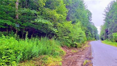 Photo of 0 Wildcat, Monticello, NY 12701 (MLS # 4992545)