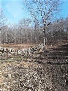 Photo of Lot 9 Midland Lake Road, Middletown, NY 10941 (MLS # 5119550)