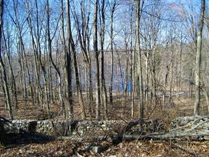 Photo of 0 Reservoir Road, Brewster, NY 10509 (MLS # 4820553)