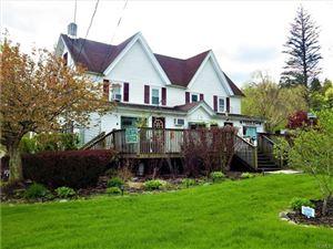 Photo of 1166 County Road 114, Cochecton, NY 12726 (MLS # 4934565)