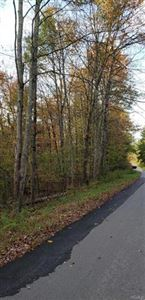 Photo of Gabriel Road, Bethel, NY 12720 (MLS # 4847578)