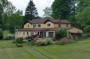 Photo of 114 Castle Hill Road, Parksville, NY 12768 (MLS # 4909585)