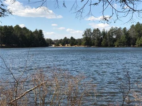 Photo of Lot 19 Deer Meadow, Bethel, NY 12720 (MLS # 6019617)