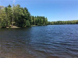 Photo of Lot 56 Timber Lake Drive, Highland, NY 12528 (MLS # 4997620)