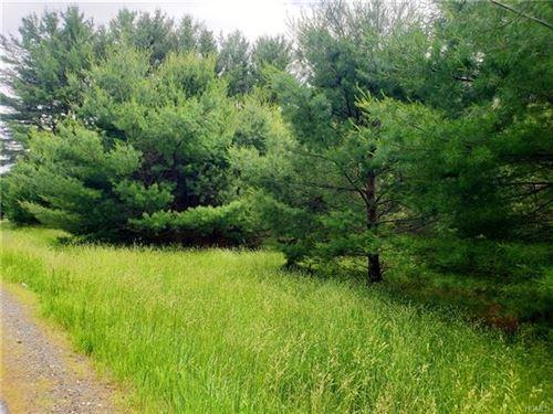 Tiny photo for Co Road 22, Narrowsburg, NY 12764 (MLS # 4970622)