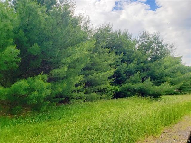 Photo for Co Road 22, Narrowsburg, NY 12764 (MLS # 4970622)