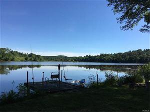 Photo of 515 Briscoe Road, Swan Lake, NY 12783 (MLS # 4828630)