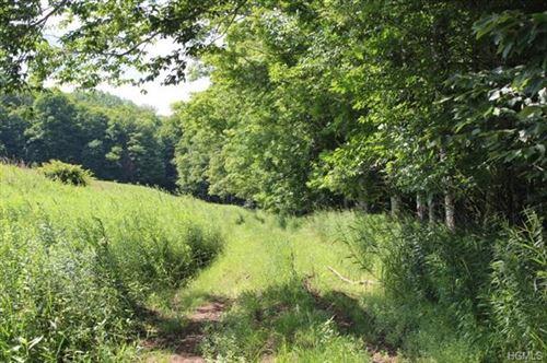 Photo of Treyz Hill Road, Livingston Manor, NY 12758 (MLS # 4989638)
