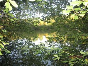 Photo of Blackberry Lake Road, Jeffersonville, NY 12748 (MLS # 5071652)